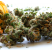 Medical Cannabis 101: Know The Basics To Help You Decide